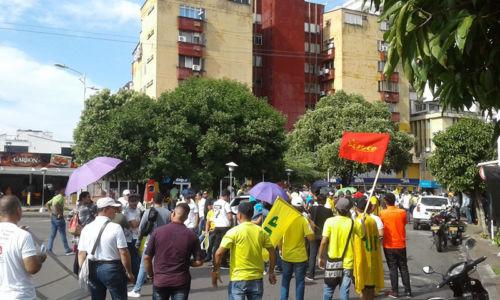 7A Marcha Vida Barranca (5)