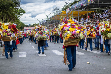 Desfile Silleteros (10)
