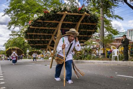 Desfile Silleteros (7)