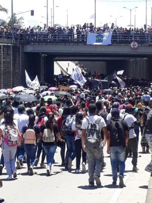 Estudiantes Popayan (1)