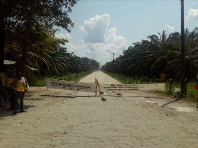 Huelga Indupalma 8