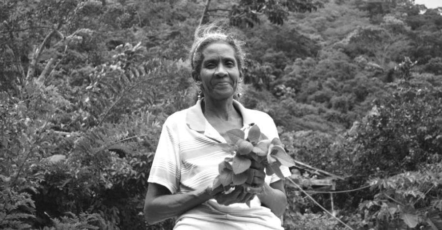 Asesinan a lideresa social en Magdalena, Colombia