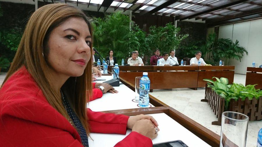 FARC piden detener