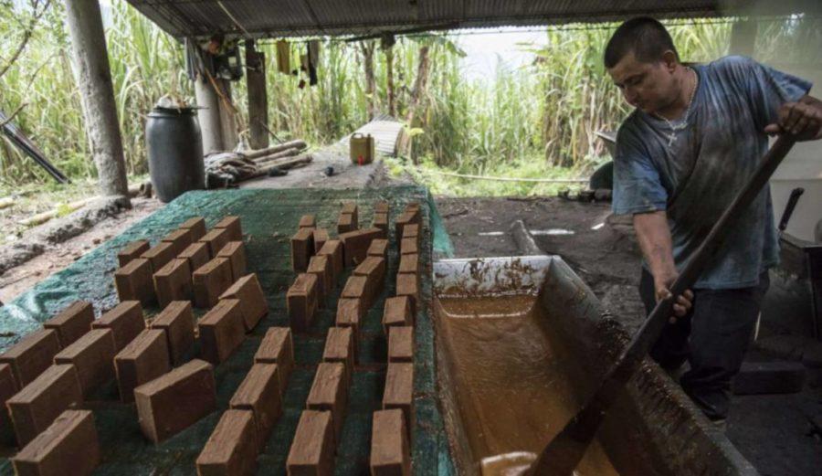 Riopaila quiere apropiarse de la producción de panela - Colombia Informa  Económicas